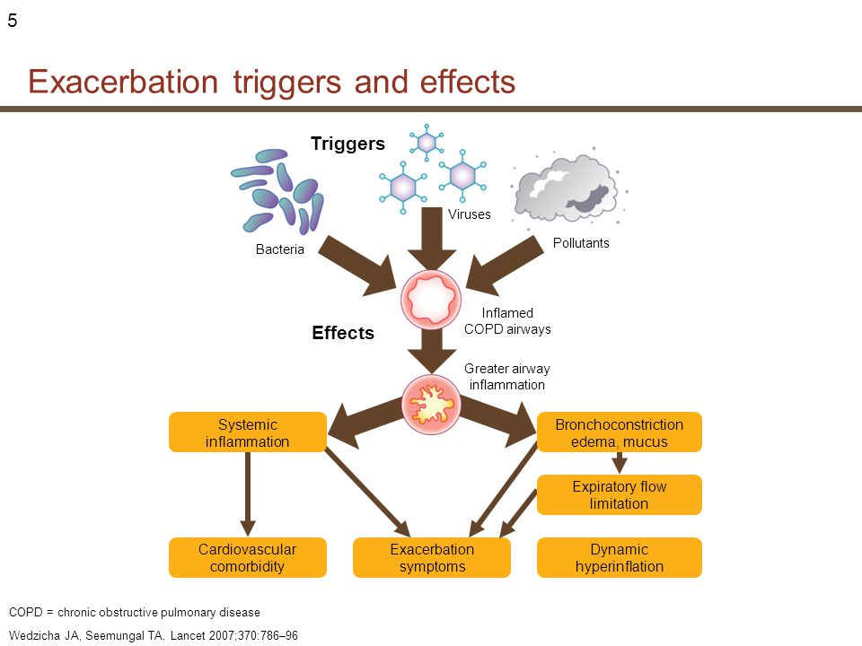 Exacerbation triggers and effects