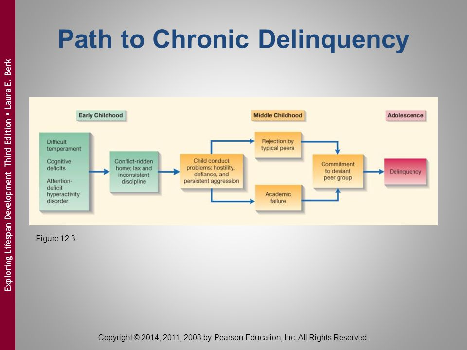 Path to Chronic Delinquency