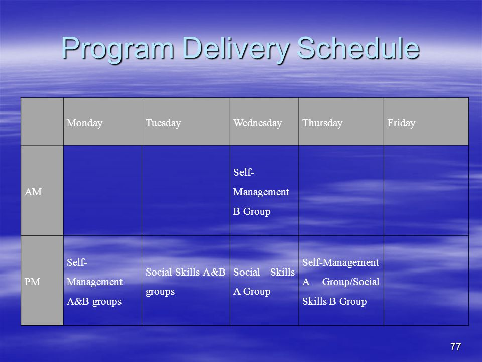 Program Delivery Schedule