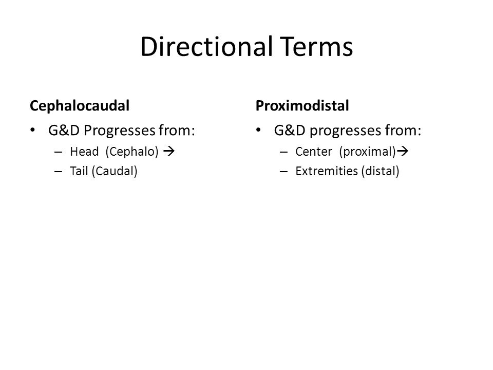 Directional Terms Cephalocaudal Proximodistal G&D Progresses from: