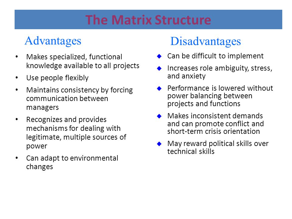 The Matrix Structure Advantages Disadvantages