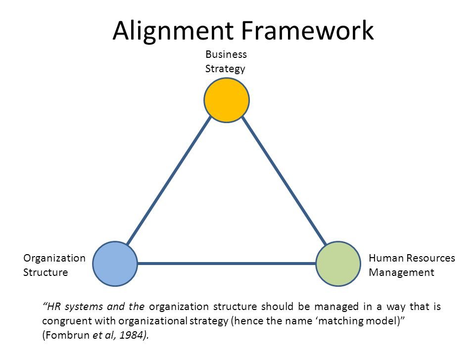 Alignment Framework Business Strategy Organization Structure