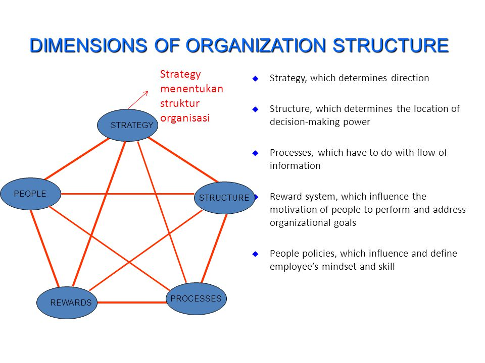 DIMENSIONS OF ORGANIZATION STRUCTURE