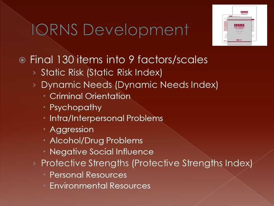 IORNS Development Final 130 items into 9 factors/scales