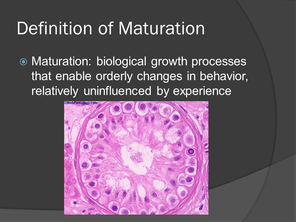 Definition of Maturation