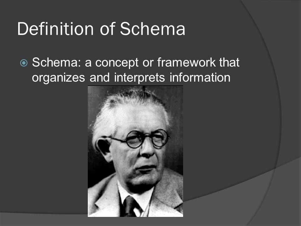 Definition of Schema Schema: a concept or framework that organizes and interprets information
