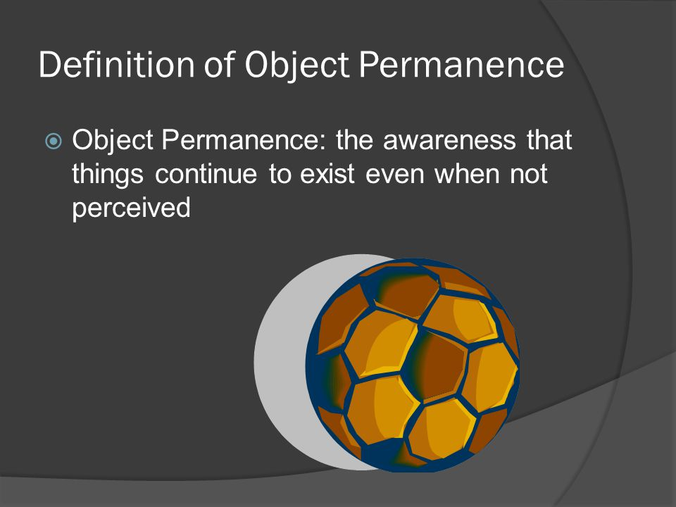 Definition of Object Permanence