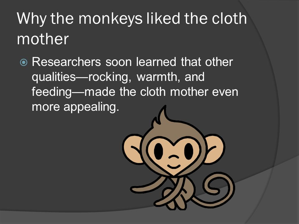 Why the monkeys liked the cloth mother
