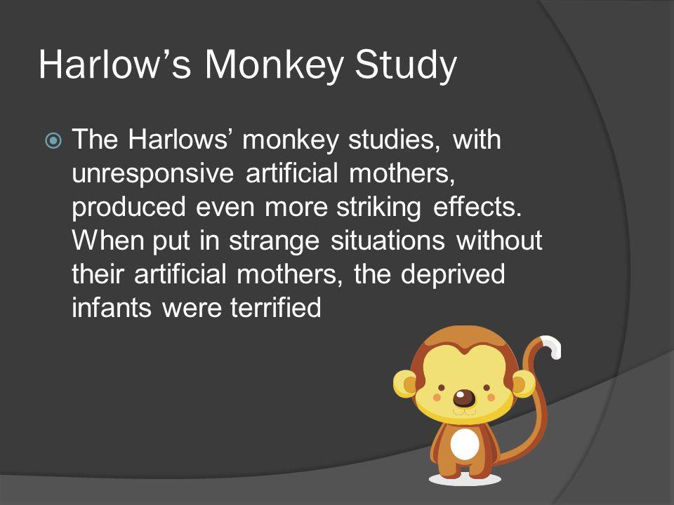 Harlow's Monkey Study