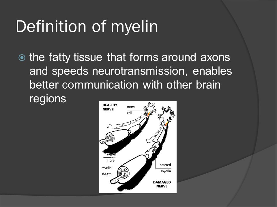 Definition of myelin the fatty tissue that forms around axons and speeds neurotransmission, enables better communication with other brain regions.