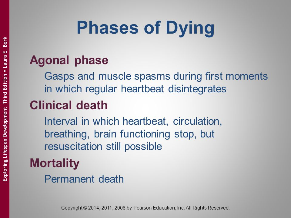 Phases of Dying Agonal phase Clinical death Mortality