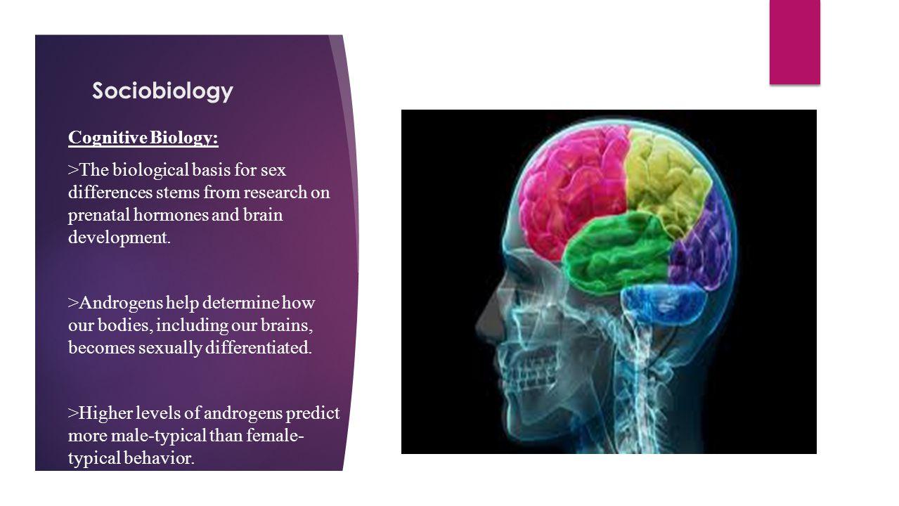 Sociobiology Cognitive Biology: