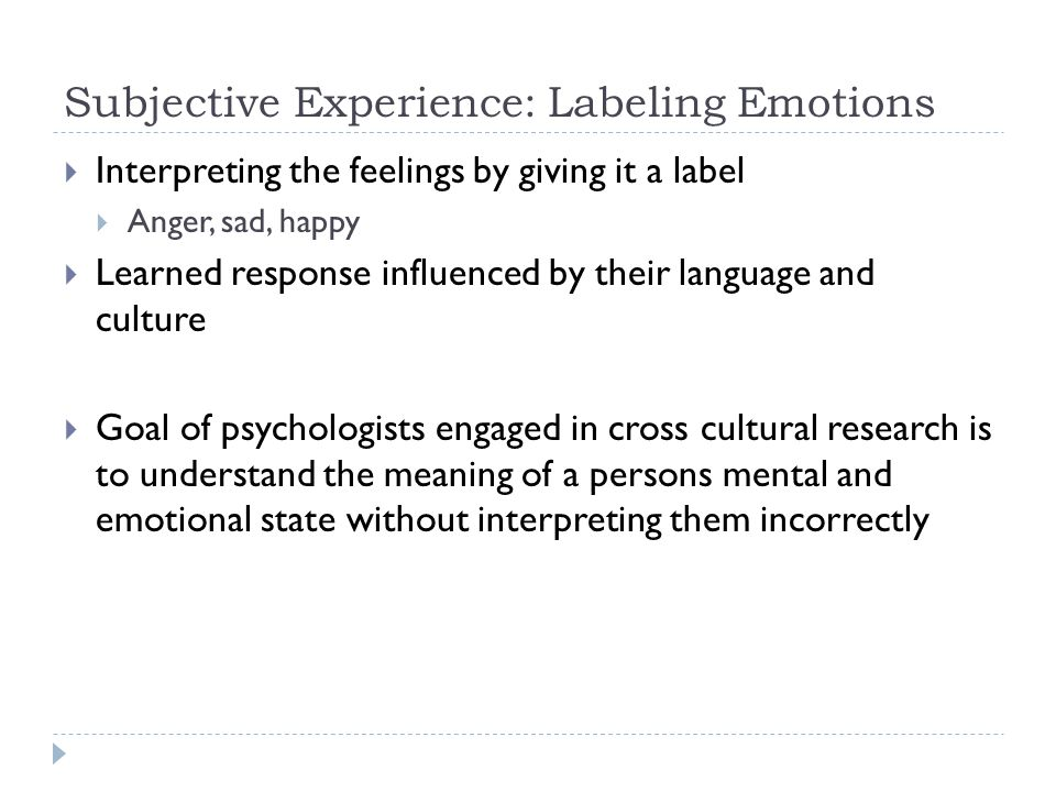 Subjective Experience: Labeling Emotions