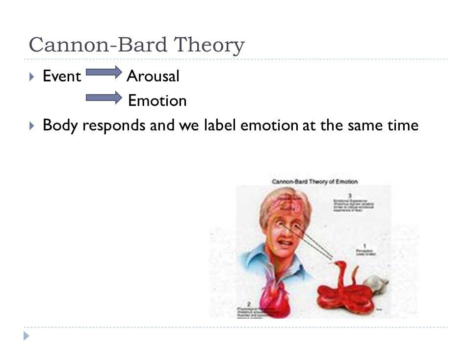 Cannon-Bard Theory Event Arousal Emotion