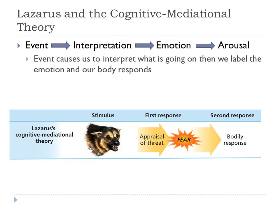 Lazarus and the Cognitive-Mediational Theory