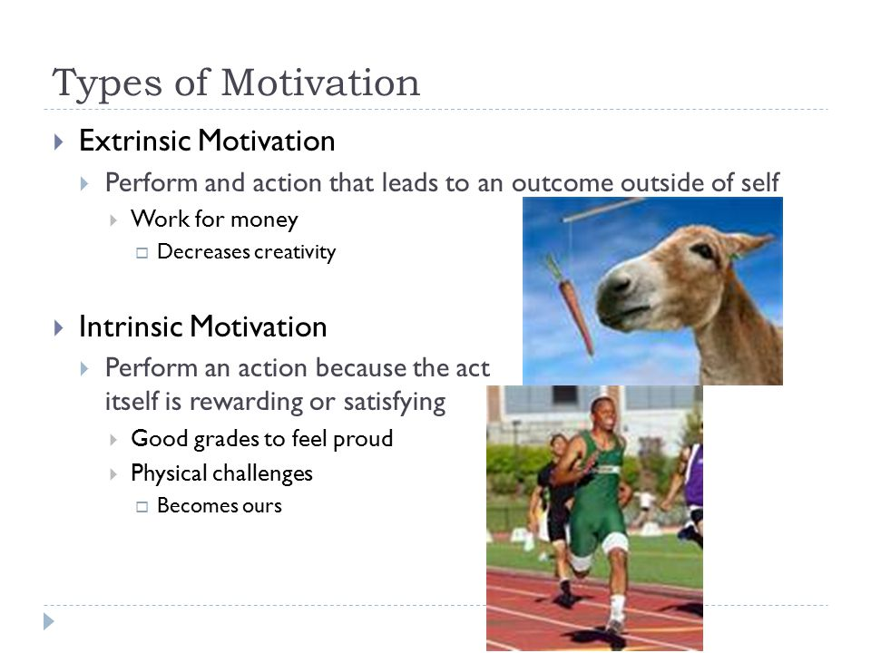 Types of Motivation Extrinsic Motivation Intrinsic Motivation