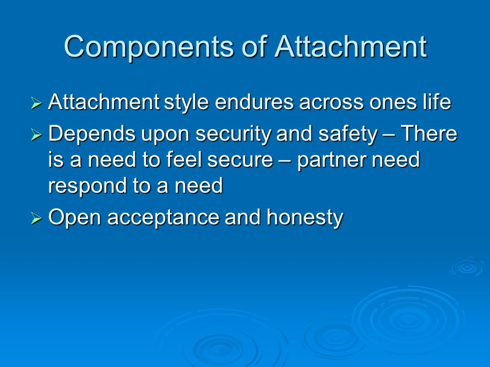 Components of Attachment