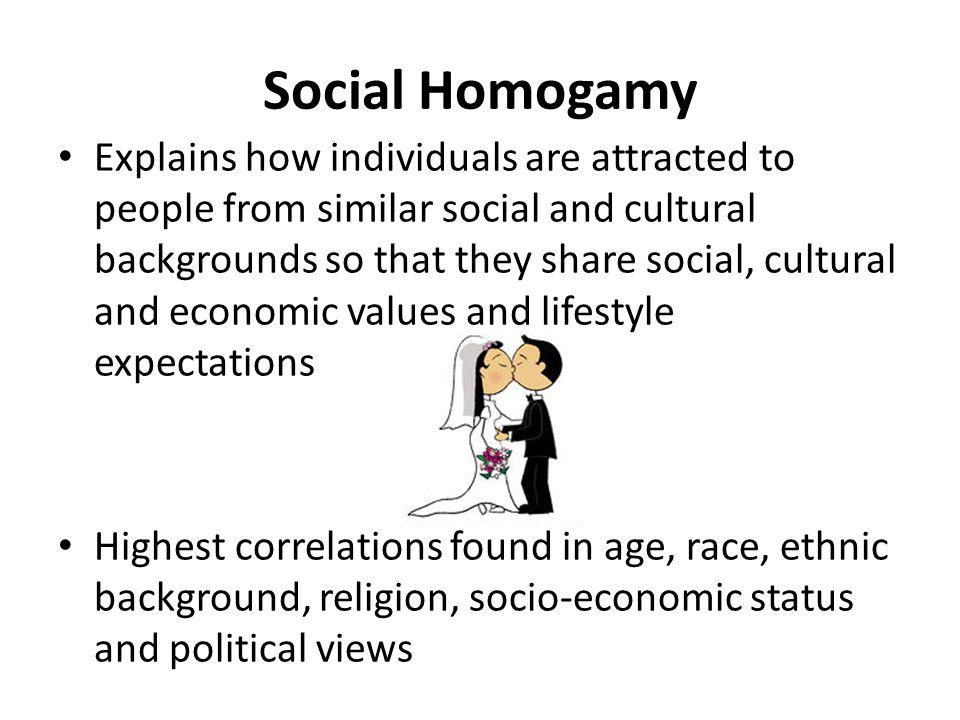 Social Homogamy