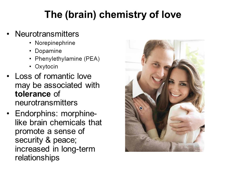 The (brain) chemistry of love