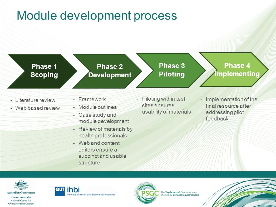 Module development process