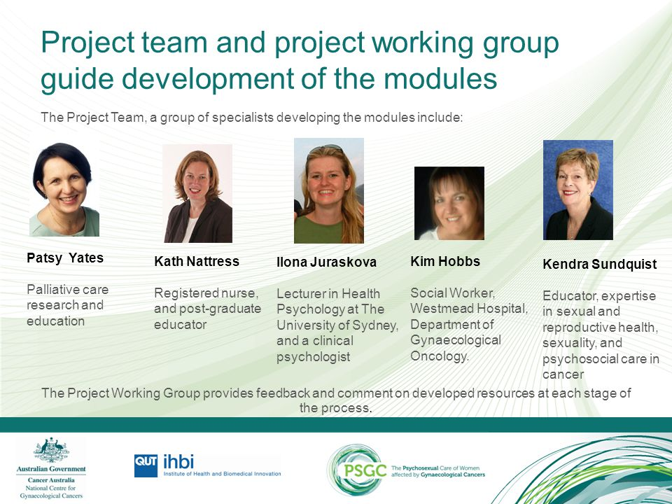 Project team and project working group guide development of the modules