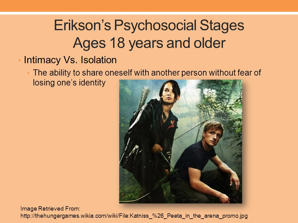 Erikson's Psychosocial Stages Ages 18 years and older