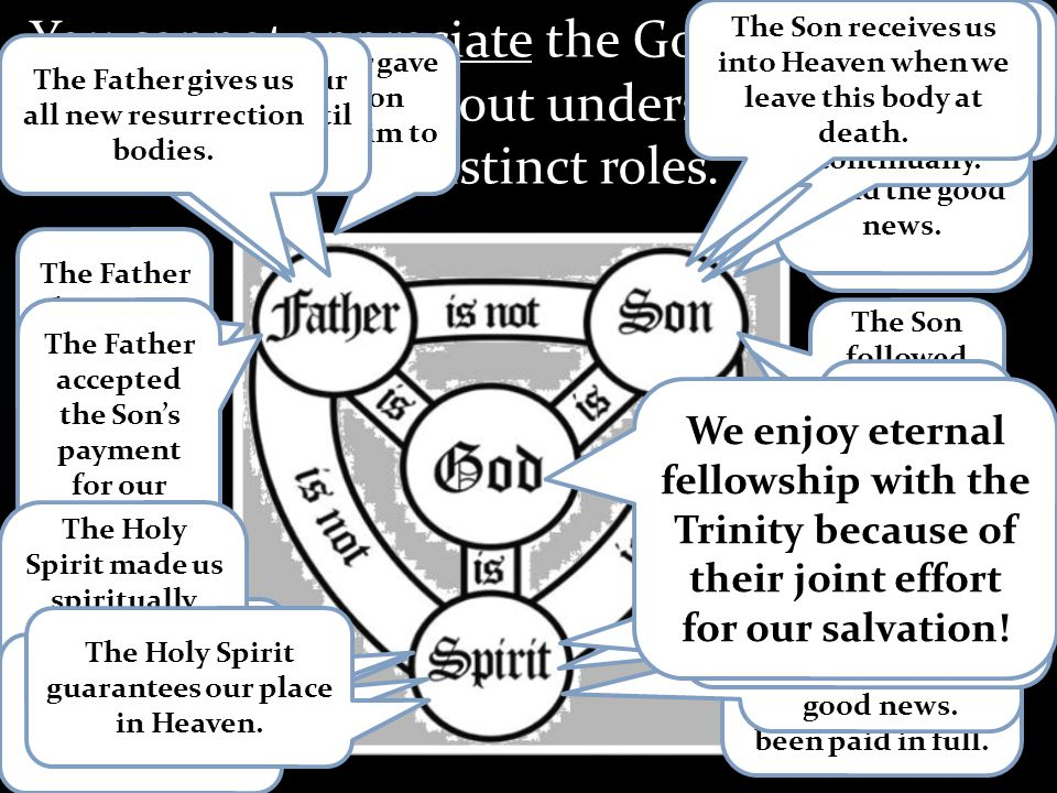 You cannot appreciate the Gospel or your own salvation without understanding the Trinity and their distinct roles.