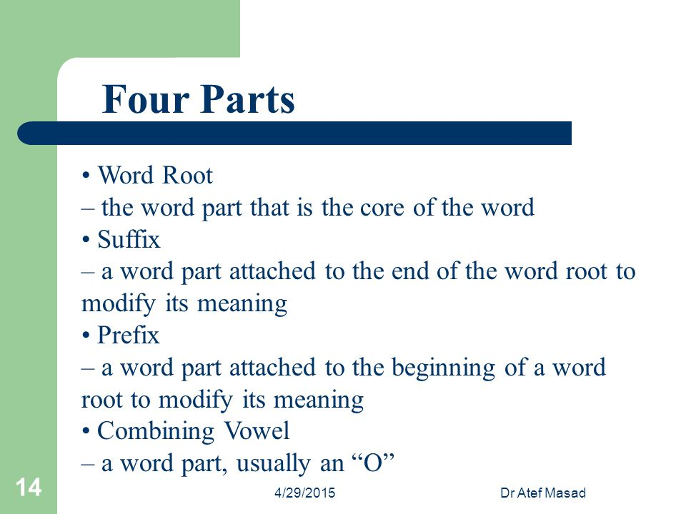 Four Parts • Word Root – the word part that is the core of the word