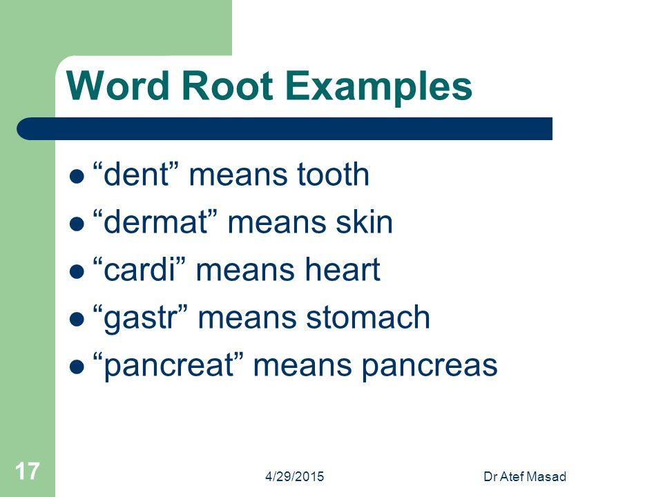 Word Root Examples dent means tooth dermat means skin