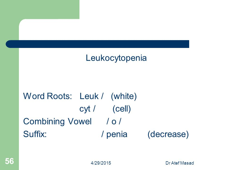 Word Roots: Leuk / (white) cyt / (cell) Combining Vowel / o /