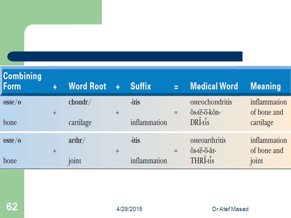 4/13/2017 Dr Atef Masad