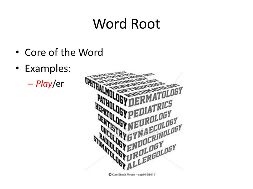 Word Root Core of the Word Examples: Play/er