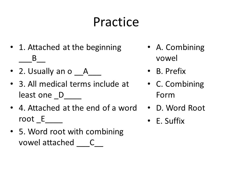 Practice 1. Attached at the beginning ___B__ 2. Usually an o __A___