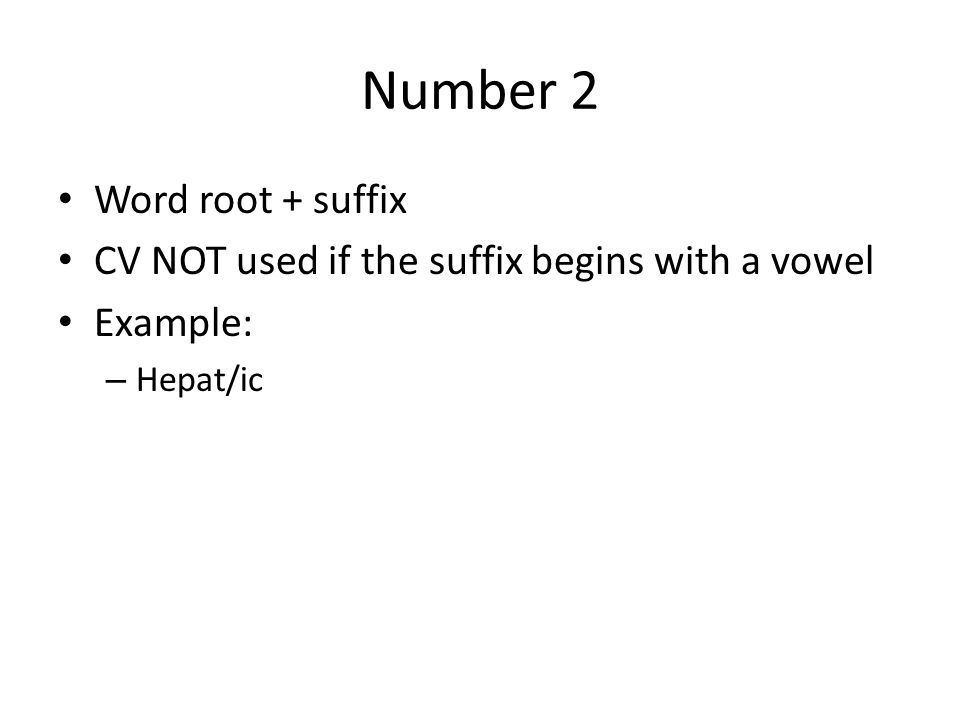 Number 2 Word root + suffix
