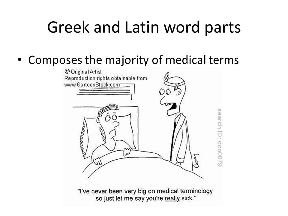 Greek and Latin word parts