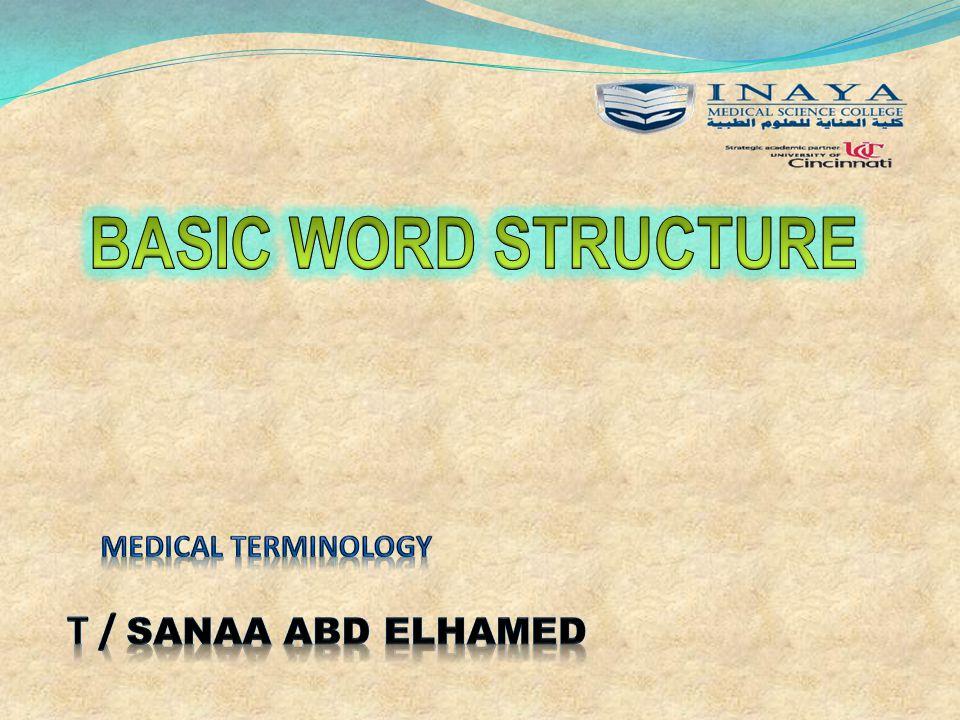Medical terminology T / sanaa abd elhamed