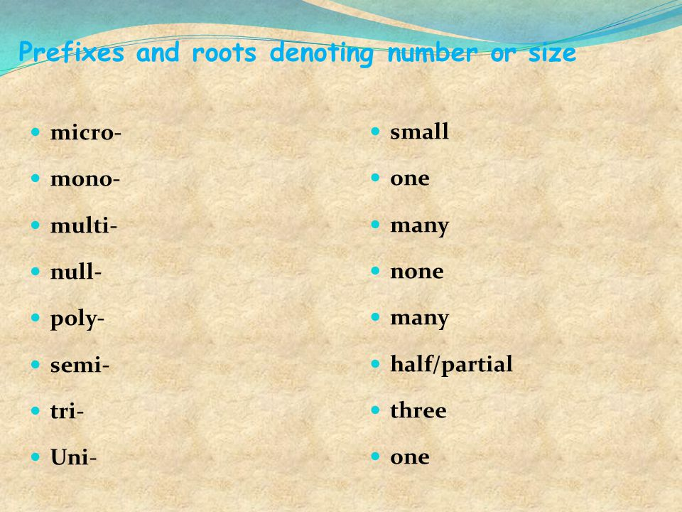 Prefixes and roots denoting number or size