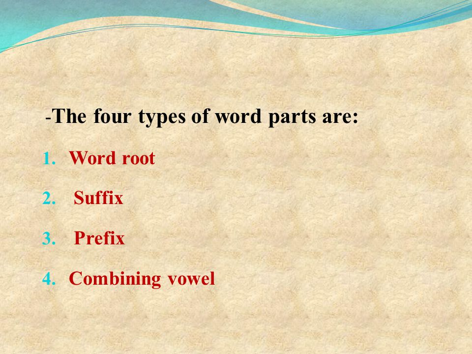 -The four types of word parts are: