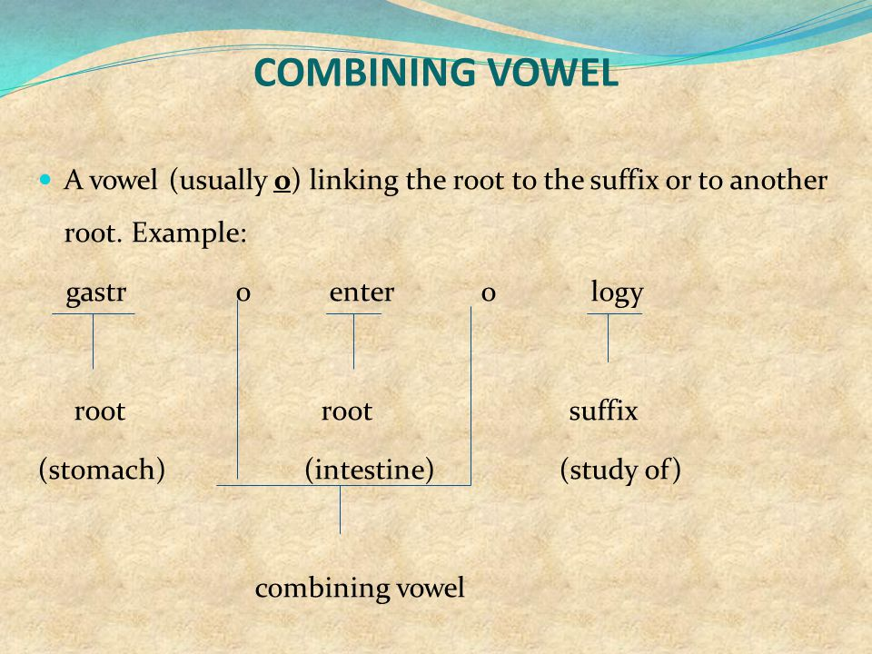 COMBINING VOWEL A vowel (usually o) linking the root to the suffix or to another root. Example: