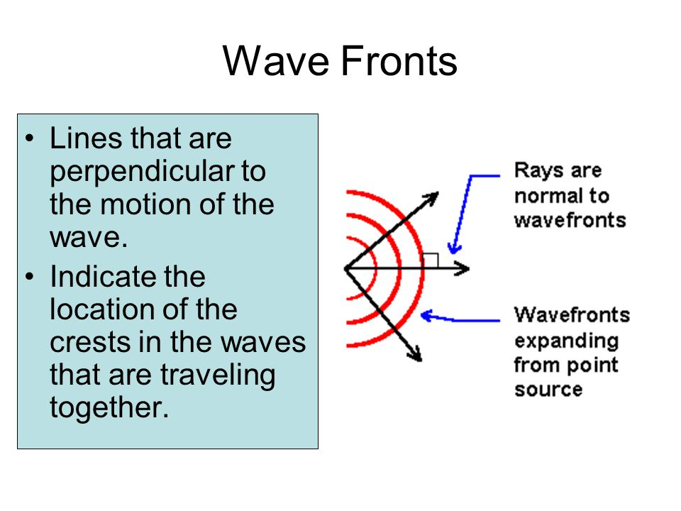 Wave Fronts Lines that are perpendicular to the motion of the wave.