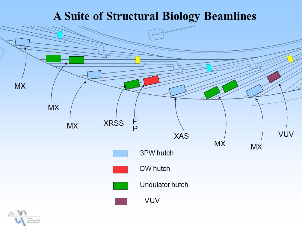 A Suite of Structural Biology Beamlines