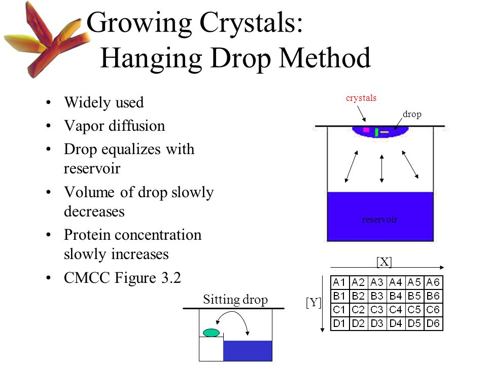 Growing Crystals: Hanging Drop Method