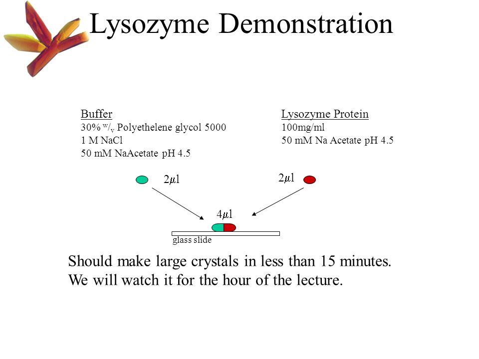 Lysozyme Demonstration
