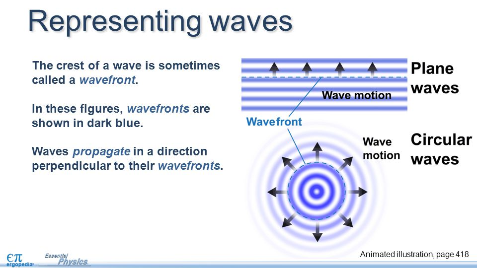 Representing waves The crest of a wave is sometimes called a wavefront. In these figures, wavefronts are shown in dark blue.