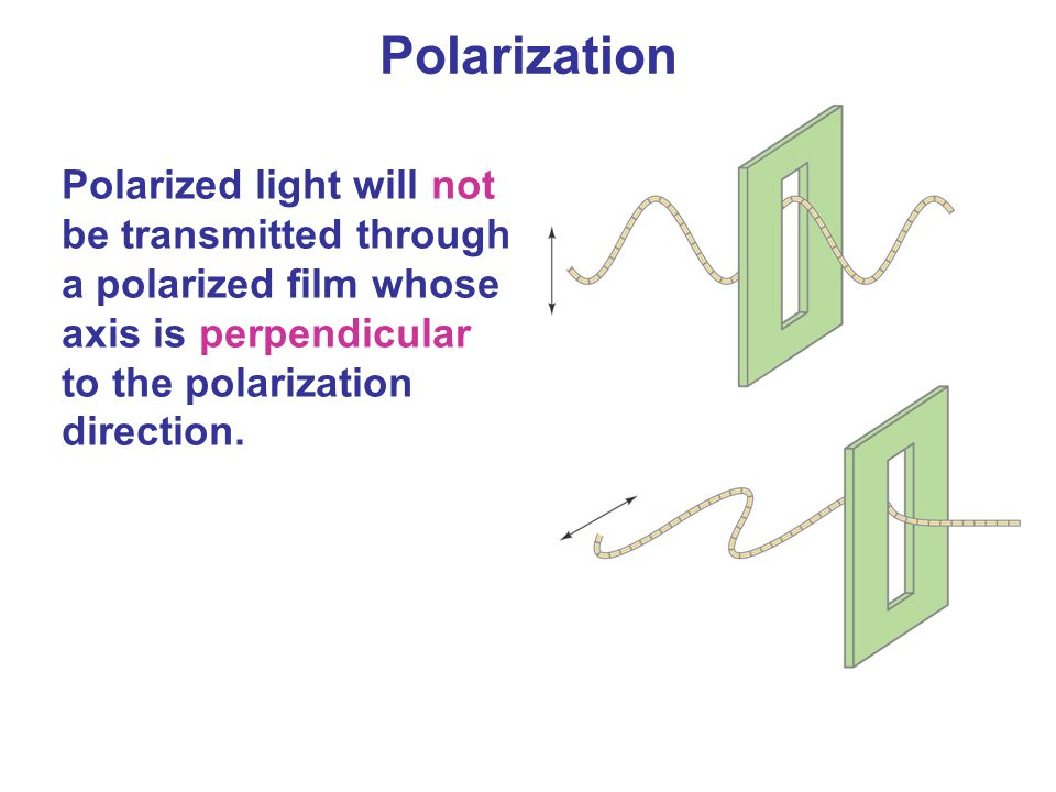 Polarization Polarized light will not be transmitted through a polarized film whose axis is perpendicular to the polarization direction.
