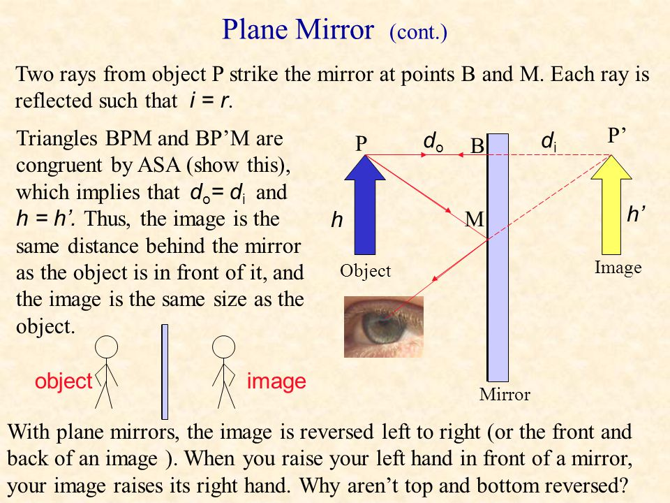 Plane Mirror (cont.) Two rays from object P strike the mirror at points B and M. Each ray is reflected such that i = r.