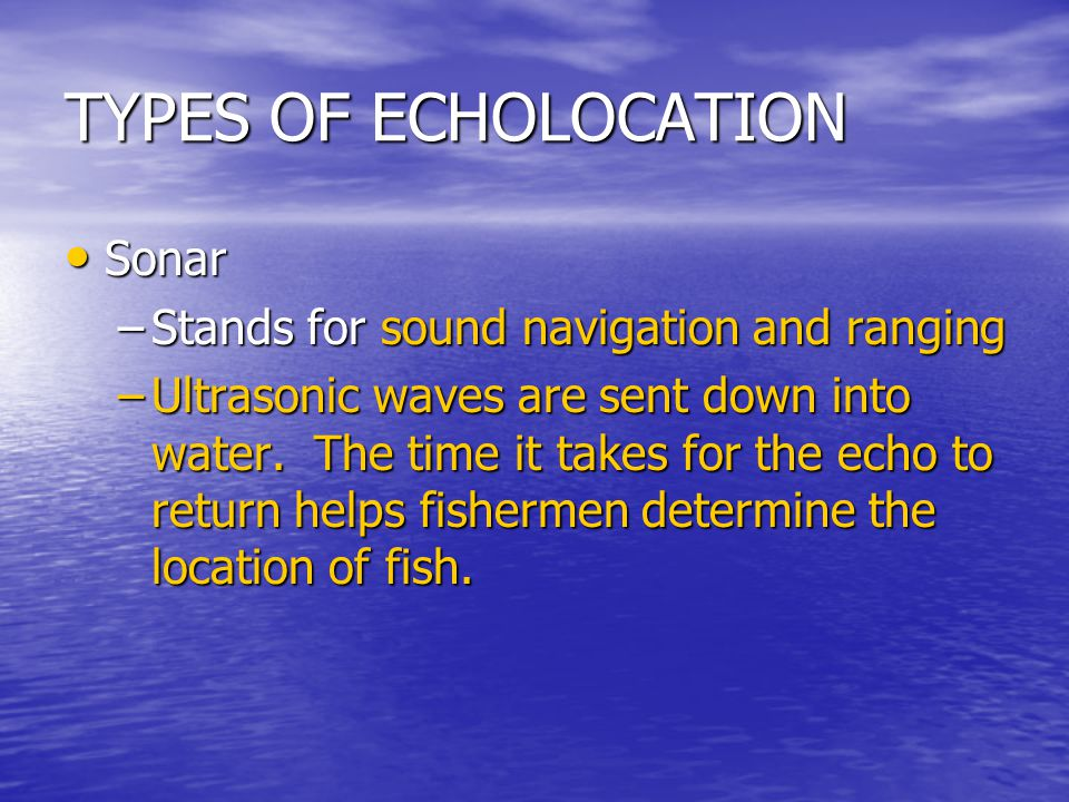 TYPES OF ECHOLOCATION Sonar Stands for sound navigation and ranging