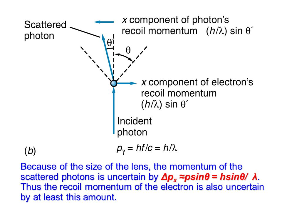 Because of the size of the lens, the momentum of the scattered photons is uncertain by Δpx ≈psinθ = hsinθ/ λ.