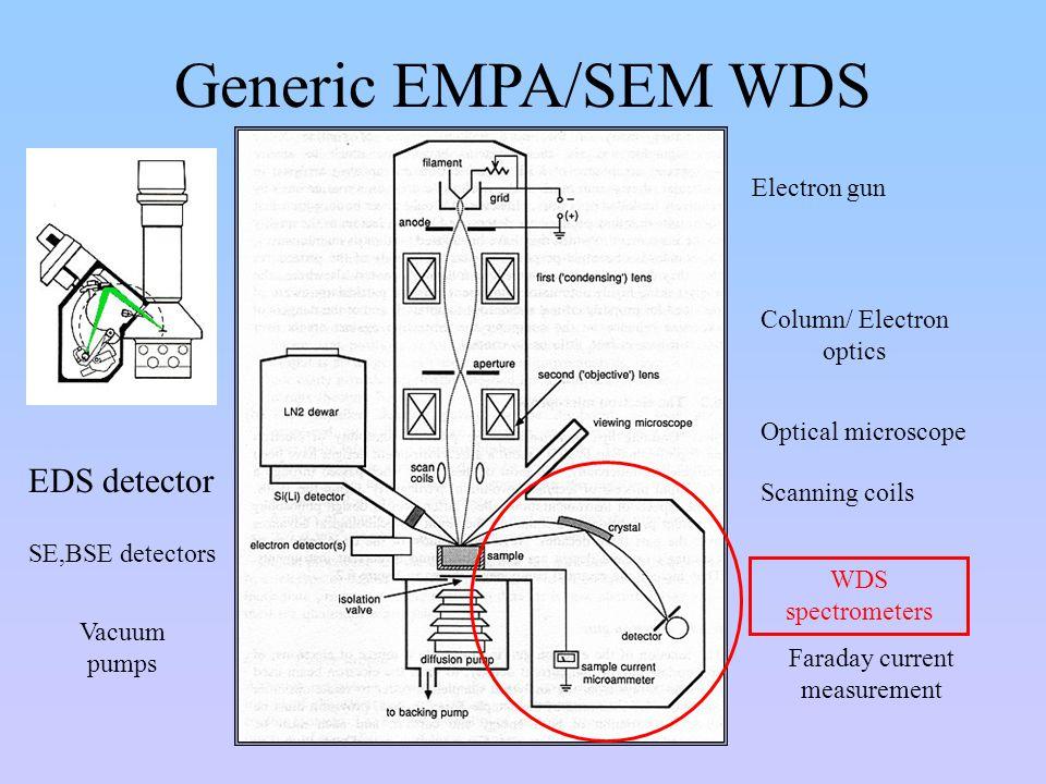 Generic EMPA/SEM WDS EDS detector Electron gun Column/ Electron optics