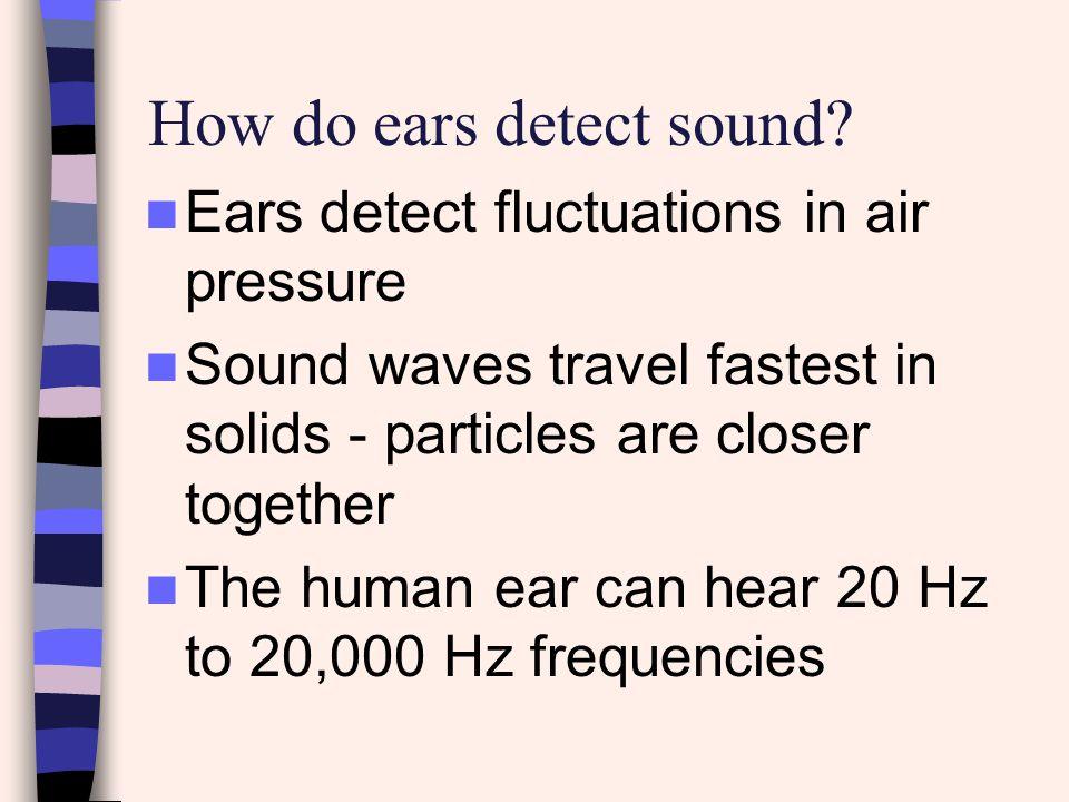 How do ears detect sound